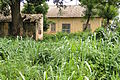 House and Field - Abomey - Benin.jpg
