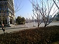 Huangdao, Qingdao, Shandong, China - panoramio (562).jpg