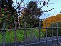 IMG City park.jpg