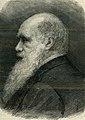 Il naturalista Carlo Darwin.jpg