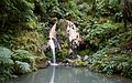 Ilha de São Miguel PC310195 (25000386391).jpg