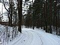 Imanta, Kurzeme District, Riga, Latvia - panoramio (36).jpg