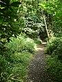 In Uplawmoor glen - geograph.org.uk - 1420985.jpg