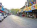 India-7407 - Flickr - archer10 (Dennis).jpg