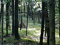 Iserlohn, Germany - panoramio (20).jpg