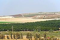 Israel-04663 - Valley of Sorek (32851097763).jpg