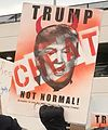 January 2017 DTW emergency protest against Muslim ban - 05.jpg
