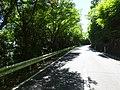 Japan Goshikidai 県道180号・山腹.jpg