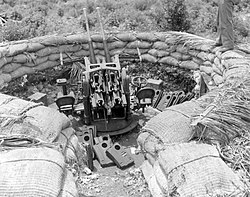 Japanese 25mm Anti-aircraft gun - Guam.jpg