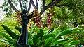Jardim Municipal - St Francisco de Assis monument (Funchal) (24245939418).jpg