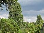 Jardin des serres d'Auteuil, Paris 16e 6.jpg