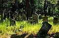 Jewish cemetery Otwock 10758791.jpg
