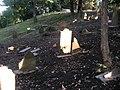 Jewish cemetery in Gdansk - panoramio - Sławek Zawadzki (18).jpg