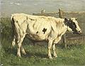 Johannes Hubertus Leonardus de Haas - Jonge stier.jpg