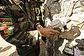 Joint combat patrol DVIDS244236.jpg