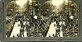 July 4th parade, Seattle, Washington, July 4, 1898 (3804163725).jpg