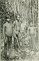 Jungle trails and jungle people - travel, adventure and abservation in the Far East (1905) (14593346529).jpg