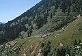 Kackar Gebirge oberhalb von Ayder.jpg