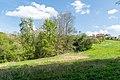 Kalletal - 2015-05-02 - LIP-031 Weinberg (21).jpg