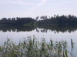 Widok z brzegu na jezioro Kalwa - okolice wsi Miłuki