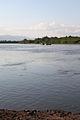 Kamchatka River 2010 136.jpg