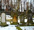 Kamienna Góra, cmentarz żydowski (Aw58) DSC09902.JPG