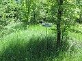 Kaniv Nature Reserve (May 2018) 67.jpg
