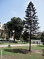 Karachi, New Day Secondary School Park - panoramio.jpg