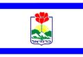 Karmiel flag.png