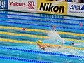 Kazan 2015 - Madeline Groves relay heats.JPG