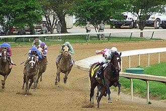 Rachel Alexandra - Rachel Alexandra winning the Kentucky Oaks.