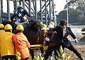 Kochi Racecourse 20140101 4R.JPG