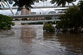 Kurilpa Bridge and the flooded Brisbane River 3.jpg