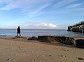 L'homme face à la l'océan.jpg
