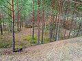 Līksna Parish, LV-5456, Latvia - panoramio (16).jpg
