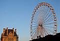 La grande roue dans le jardin des Tuileries (2685727040).jpg
