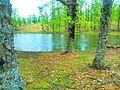 "Lake Landscape "" Asttah "".jpg"
