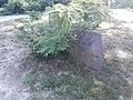 Lamb's Creek Episcopal Church and associated graves - 14.jpg