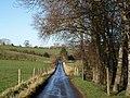 Lane to Netherton - geograph.org.uk - 1634247.jpg