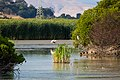 Las Gallinas Wastewater Ponds (35682659913).jpg