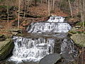 Leonard Harrison State Park Turkey Path Waterfall 4.jpg