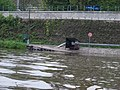 Libčice nad Vltavou, přístaviště přívozu.jpg