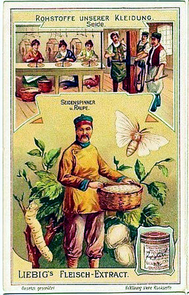 文件:1907年李比希莱unserer Kleidung Seide.jpg