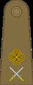 Lieutenant Colonel CNRA.png