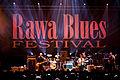 Lil Ed 31 Rawa Blues 2011 025.jpg