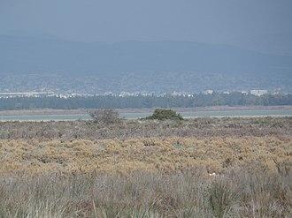 Limassol Salt Lake - Image: Limassol Salt Lake 3