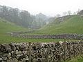 Limestone Walls - geograph.org.uk - 772980.jpg