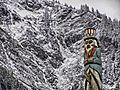Lincoln Mt Juneau reT2110.jpg