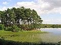 Lindean Reservoir - geograph.org.uk - 214000.jpg