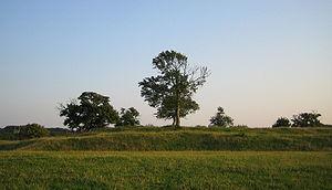 Lindholmen Castle -  A grassy mound is the only structural remainder of Lindholmen Castle ruin today